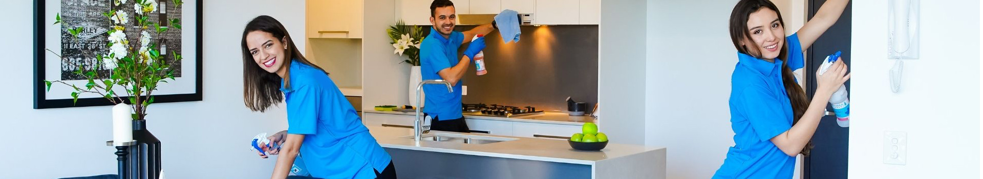 Commercial disinfecting banner