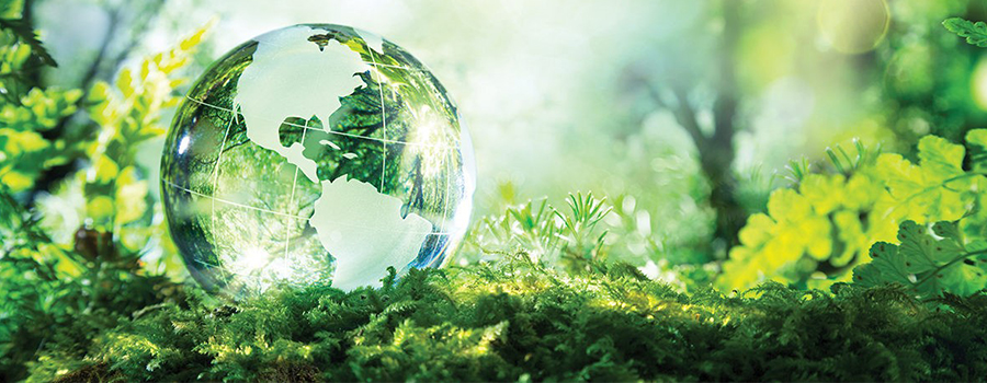 LEED Green cleaning banner image